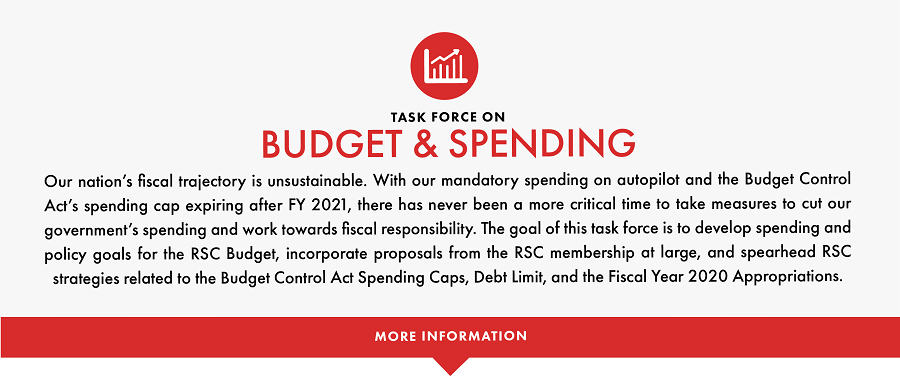 The goal of this task force is to develop spending and policy goals